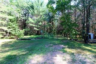 Land for sale in 1524 B LINE ROAD, Pembroke, Ontario