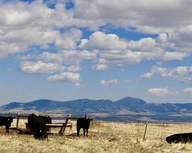 Lots And Land for sale in 6578 US Hwy 89, Belt, MT, 59412