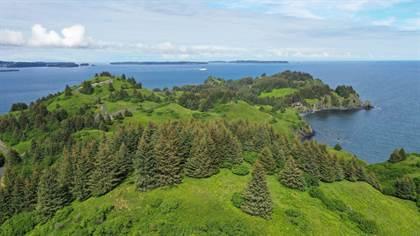 Lots And Land for sale in L3 Black Rock - Cliff Point Estates, Kodiak, AK, 99615