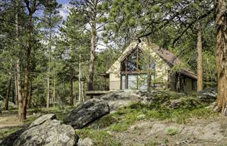 Residential Property for sale in 741 Cabin Creek Rd, Allenspark, CO, 80510