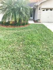 Other for sale in 2589 Northfield Lane, Clearwater, FL, 33761