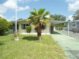 Residential Property for sale in 8395 WEATHERFORD AVENUE, Brookridge, FL, 34613