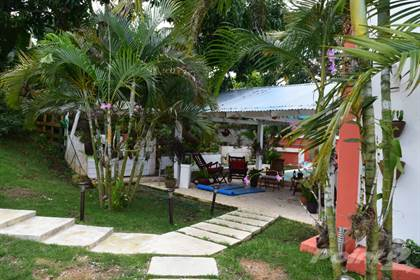 Farm And Agriculture for sale in 3 Acres Ranch Fully Developed Property in Anamuyita, Higuey, La Altagracia