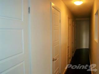 Apartment for rent in 169 Lancaster - 2 Bedroom 1 Bath, Kitchener, Ontario
