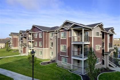 Apartment for rent in 2770 Copper Peak Lane, Longmont, CO, 80504