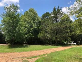 Land for sale in 346 REHOBETH DR, Pelahatchie, MS, 39145