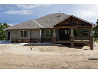 Single Family for sale in 602 Pioneer Haven Point, Palmer Lake, CO, 80133