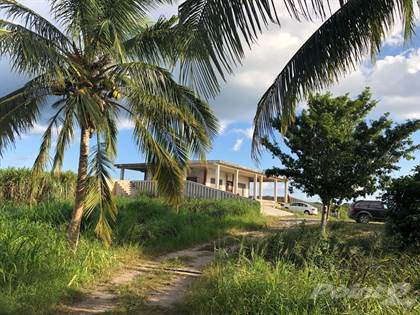 For Sale: Ranch for Sale in Yalcon Yucatan, Valladolid, Yucatan - More on  POINT2HOMES com