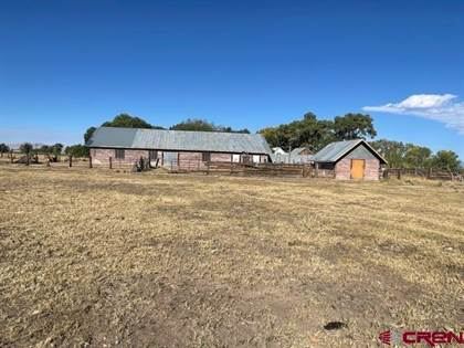 Farm And Agriculture for sale in county Rd L, Antonito, CO, 81120
