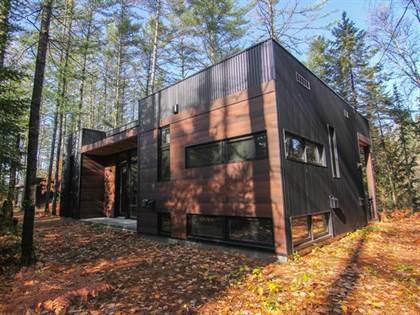 Single Family for sale in 38 Ch. de l'Opale, Notre-Dame-du-Laus, Quebec, J0Y2M0