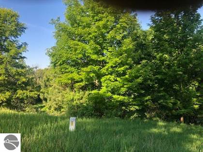 Lots And Land for sale in 1071 Clubhouse Drive, Lake Isabella, MI, 48893