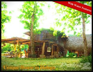 Residential Property for sale in Big Price Reduction! Unique Chalet for Sale, Dolega, Chiriquí