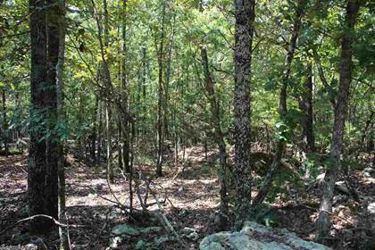 Lots And Land for sale in off Apollo Lane, Flippin, AR, 72634
