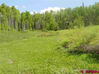 Lots And Land for sale in 342 & 344 SPRUCE Glen, Creede, CO, 81130
