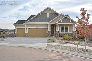 Single Family for sale in 11626 Spectacular Bid Circle, Colorado Springs, CO, 80921