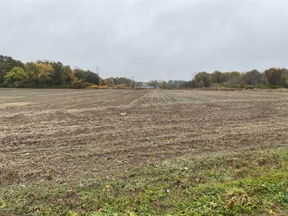 Lots And Land for sale in Detroit Road, Niles, MI, 49120