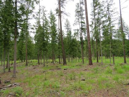 Lots And Land for sale in Lot 3 Old US Hwy 2, Troy, Troy, MT, 59935