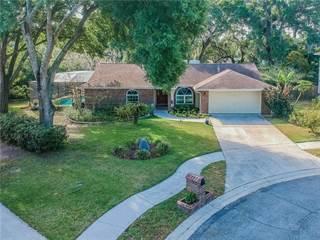 Single Family for sale in 703 CATALPA PLACE, Brandon, FL, 33510