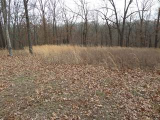 Land for sale in None Bob Roy Road, Clever, MO, 65631