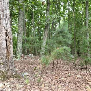 Lots And Land for sale in 118 Sierra Trace Road, Denton, NC, 27239