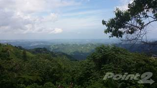 Residential Property for sale in Barrio Perchas, Morovis, PR, 00687