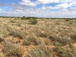 Lots And Land for sale in Tract A E County Rd B 3501, Stanton, TX, 79782