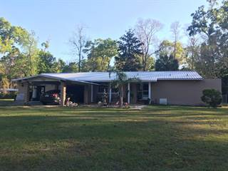 Single Family for sale in 9219 Florida Street, Fanning Springs, FL, 32693