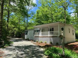 Residential Property for sale in 170 Arrowhead Lane, Hogback, NC, 28774
