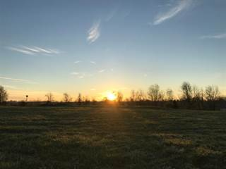 Farm And Agriculture for sale in 28 Jill Lane, Lair, KY, 41031