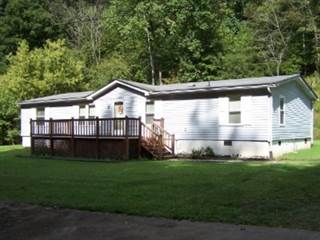 Other Real Estate for sale in 13571 Altizer Road, Arnoldsburg, WV, 26151