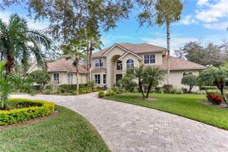 Single Family for sale in 15703 COCHESTER ROAD, Tampa, FL, 33647
