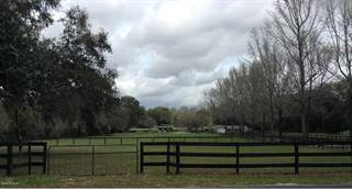 Farm And Agriculture for sale in 9281 SW 34th Place, Ocala, FL, 34481