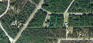 Land for sale in Seameadows Drive, Perry, FL, 32348