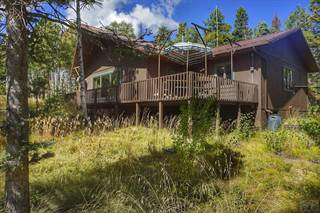Single Family for sale in 1865 Sturm Ln, Fort Garland, CO, 81133