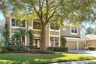 Single Family for sale in 18117 REGENTS SQUARE DRIVE, Tampa, FL, 33647