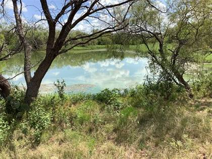 Lots And Land for sale in Tbd FM 880, Moran, TX, 76464
