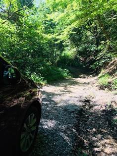 Farm And Agriculture for sale in 1-3 Ruff and Tuff Road, Prestonsburg, KY, 41653