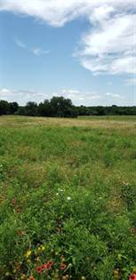 Lots And Land for sale in 0 County Road 304, Comanche, TX, 76442
