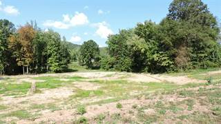 Farm And Agriculture for sale in 2096 Sour Springs Road, Olympia, KY, 40358