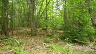 Residential Property for sale in 0 Island Road, Madoc, Ontario
