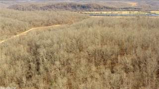 Land for sale in No address available, Pleasant Grove, AR, 72568