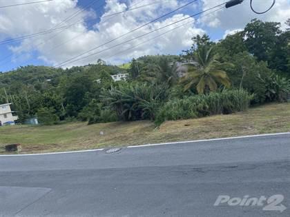 Lots And Land for sale in Cidra, Cidra, PR, 00739