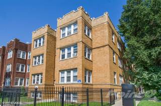 Apartment for rent in 5001-03 N. Damen Ave. / 1960-68 W. Argyle St., Chicago, IL, 60625