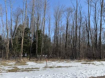 Residential Property for sale in Lot 6 - Nicholas Avenue, Wittenberg, WI, 54499