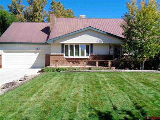 Single Family for sale in 1013 Scenic Circle, Montrose, CO, 81401
