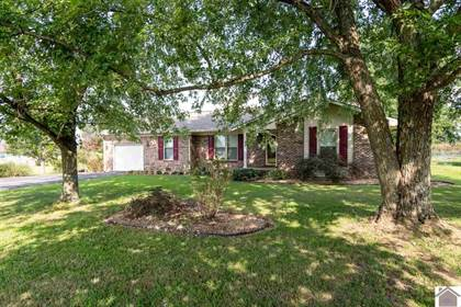 Residential Property for sale in 60 Bendefield, Farmington, KY, 42040