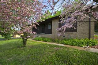 Single Family for sale in 2035 West Melville Road, Springfield, MO, 65803