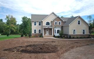 Single Family for sale in 1709 MOUNTAIN TOP RD, Martinsville, NJ, 08807