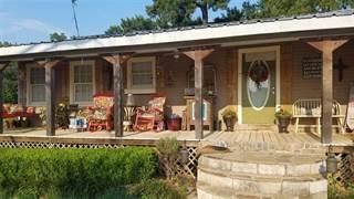 Single Family for sale in 7951 FM 1795, Big Sandy, TX, 75755