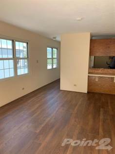 Residential Property for rent in 58 North Street, Hamilton City, City of Hamilton